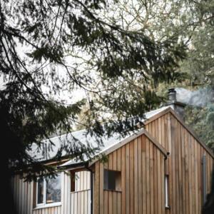2020 Timber ext1 A Baxter copy