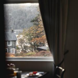 2020 Timber window view A Baxter copy