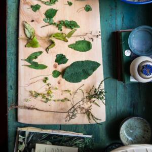 20 2018 fresh herbs detail J Bedford copy